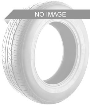 Bridgestone Weather Control A005 Evo TL 3PMSF